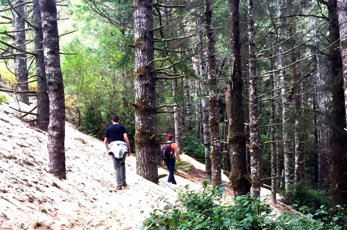Tahkenitch Dunes Hike, September 26(Sunday)